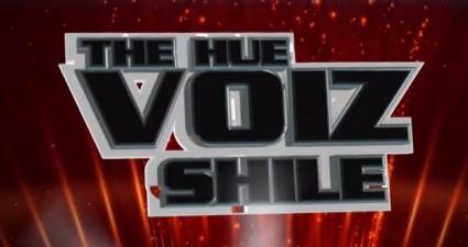 the hue voiz shile